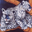 LEOPARDS JOUEURS - PLAYFUL LEOPARDS