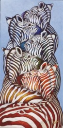 ZEBRES TRAISSES - Braided zebras