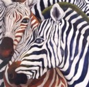REGARD DE ZEBRE- ZEBRA'S EYE